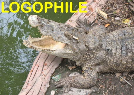 Logophile crocodile